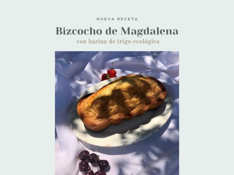 Receta-Bizcocho-de-Magdalena-casa-dels-peixos-1.png